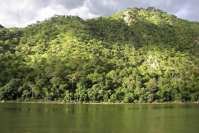 Parcs Nationaux du Zimbabwe 035