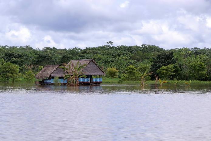 Amazonie péruvienne 019