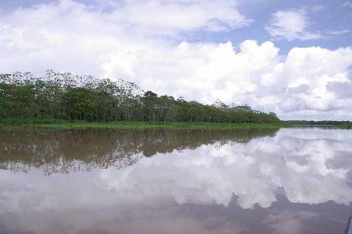 Amazonie péruvienne 014