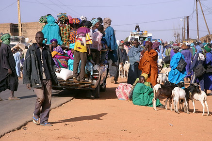 Vallée du fleuve Sénégal 022