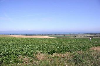 Wissant, Cap Blanc-Nez, Cap Gris-Nez 020