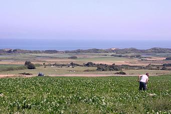 Wissant, Cap Blanc-Nez, Cap Gris-Nez 021