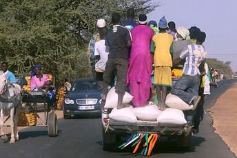 Vallée du fleuve Sénégal 008