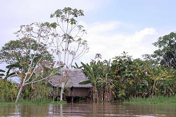 Amazonie péruvienne 021