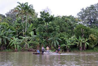 Amazonie péruvienne 007