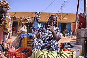 Vallée du fleuve Sénégal 041