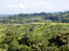 Indonésie : île de Bali