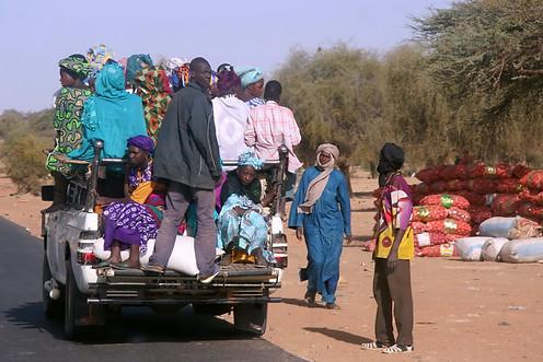 Vallée du fleuve Sénégal 009