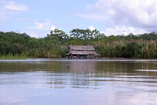 Amazonie péruvienne 020