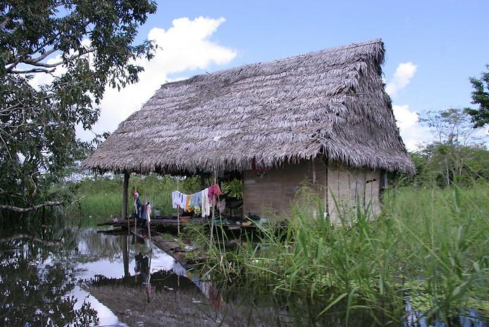 Amazonie péruvienne 023