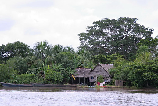 Amazonie péruvienne 001