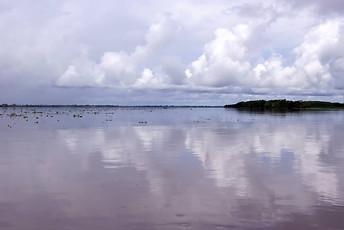 Amazonie péruvienne 011