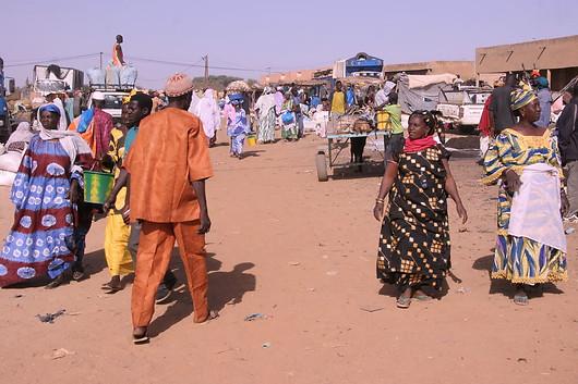 Vallée du fleuve Sénégal 029