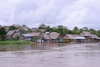 Amazonie péruvienne 006