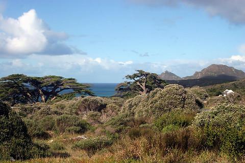 Presqu'île du Cap 026