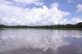 Amazonie péruvienne 017