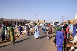 Vallée du fleuve Sénégal 016