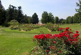 Jardins de Bagatelle 016