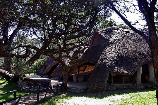 Parcs Nationaux du Zimbabwe 028