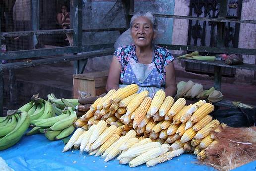 Iquitos 025