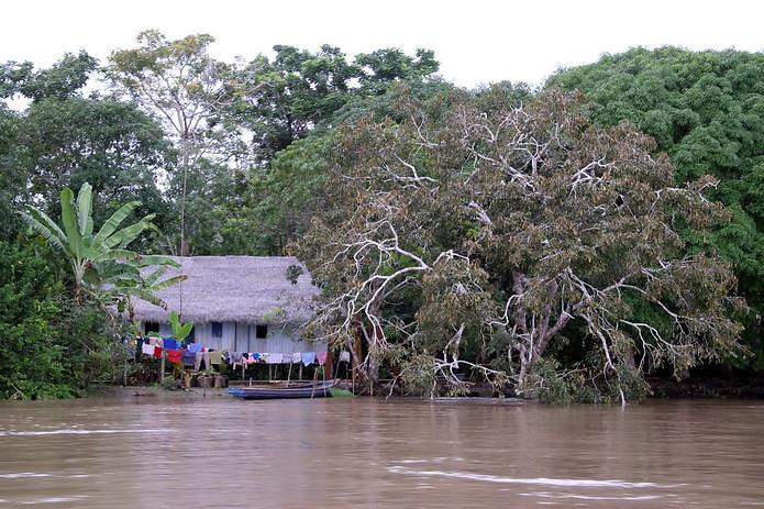 Amazonie péruvienne 003
