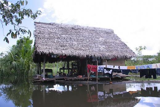Amazonie péruvienne 024