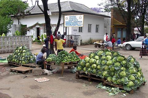 Bulawayo 004
