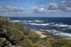 Presqu'île du Cap 012