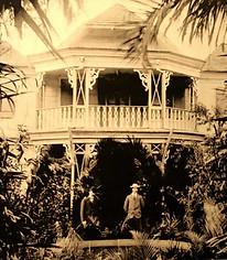 Le Sucre à l'île Maurice