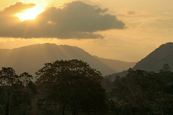 Parcs Nationaux du Zimbabwe 038
