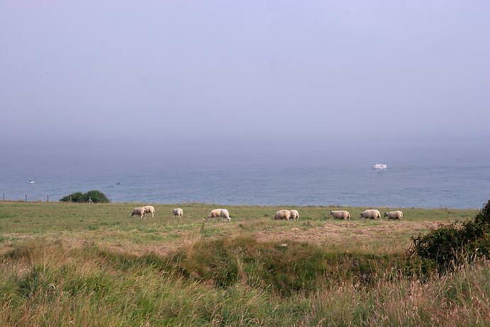 Wissant, Cap Blanc-Nez, Cap Gris-Nez 040