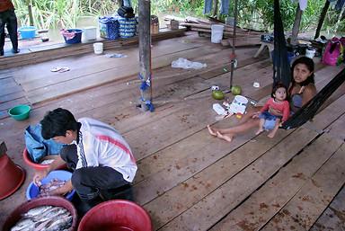 Amazonie péruvienne 037