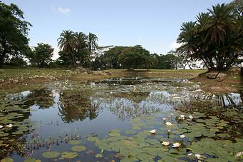 Parcs Nationaux du Zimbabwe 039