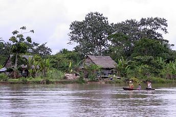 Amazonie péruvienne 002