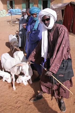 Vallée du fleuve Sénégal 017