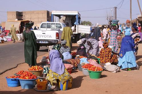 Vallée du fleuve Sénégal 012