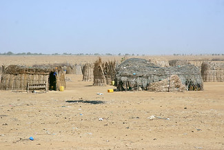 Vallée du fleuve Sénégal 034