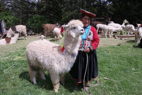 Portraits au Pérou 026