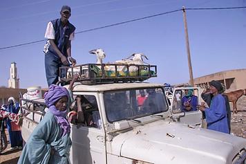Vallée du fleuve Sénégal 020