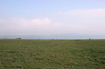 Wissant, Cap Blanc-Nez, Cap Gris-Nez 045