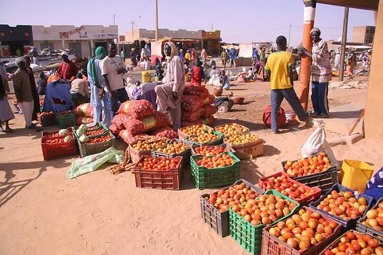 Vallée du fleuve Sénégal 035