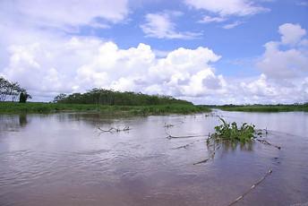 Amazonie péruvienne 013