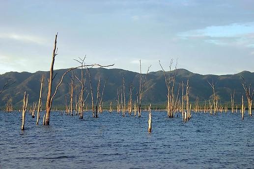 Parcs Nationaux du Zimbabwe 034