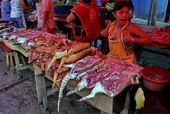 Iquitos 014