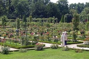 Jardins de Bagatelle 022