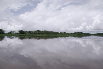 Amazonie péruvienne 012