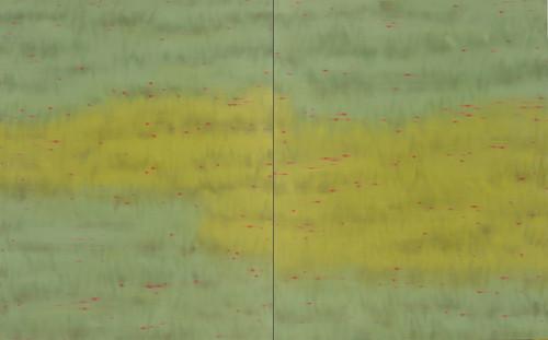 vermilion-crimson 2013 162.2x260.6cm oil on canvas