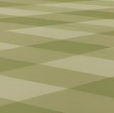 green-grid 2013 50x65.1cm oil on canvas