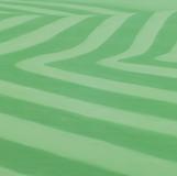 green 2010 130.3x194cm oil on canvas