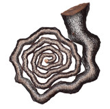 나이테 2012-2 Annual ring 2012-2 2012 97x112x8cm 동파이프 산소용접 copper welding